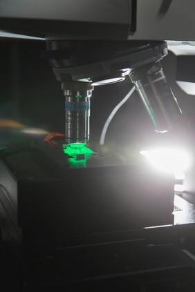 Mit einem Raman-Mikrospektroskop werden die spezifischen Schwingungsspektren von auf einem Chip gefangenen Bakterien erfasst.Foto: Sven Döring/ Leibniz-IPHT
