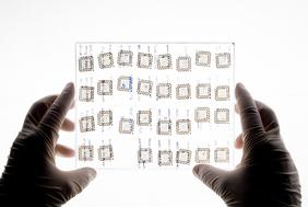 Mit Hilfe des Chips von der Größe einer Ein-Cent-Münze können schnell, vor Ort und kostengünstig Mikroorganismen nachgewiesen werden.